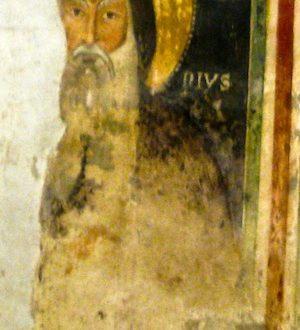 VIII Benedizione degli animali in Cattedrale nella festa di S. Antonio Abate